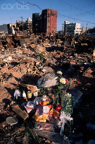 Flower Offerings on Earthquake Rubble