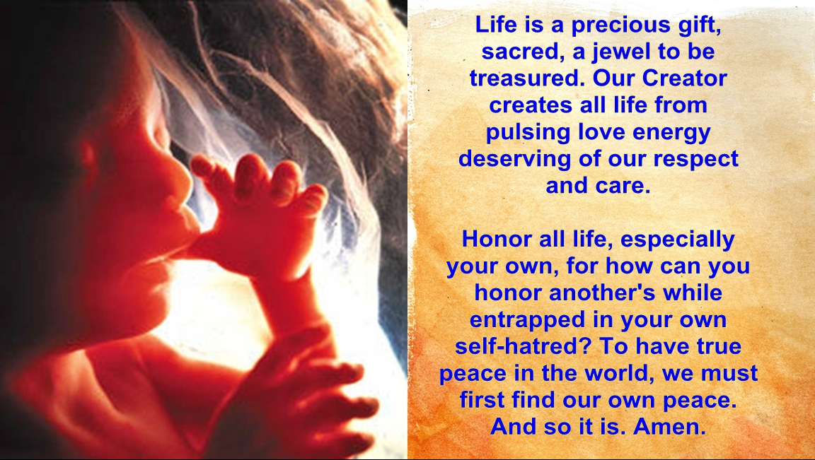 Precious Gift of Life | Source of Inspiration