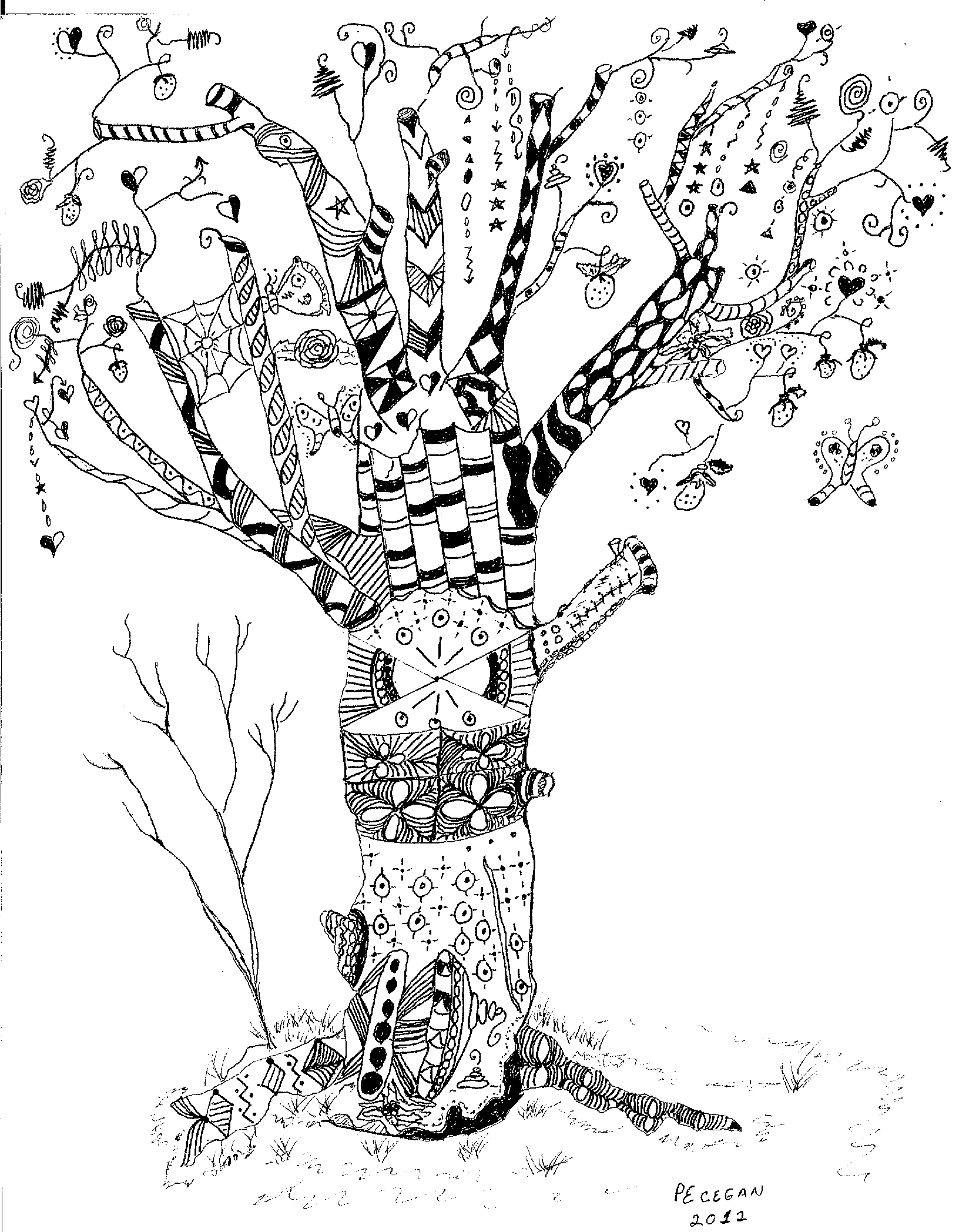 Dogwood Tree Branch Drawing Sketch Coloring Page