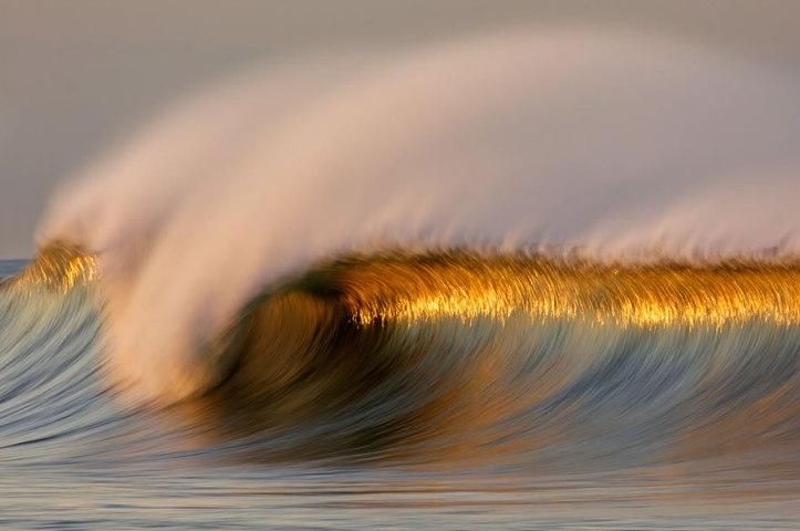 golden wave