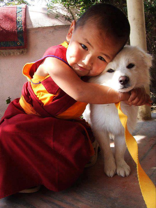 chinese boy with dog
