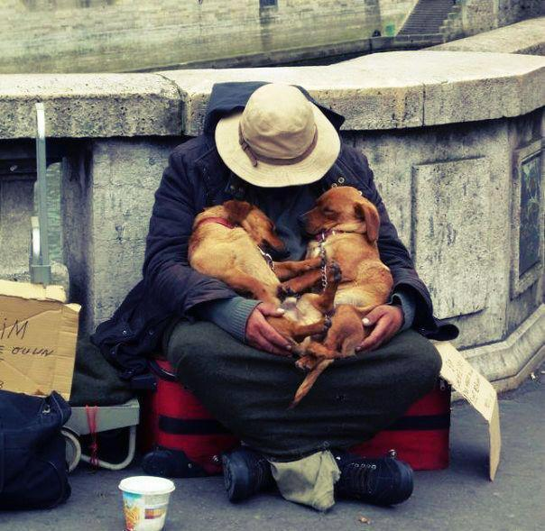 beggar and dogs