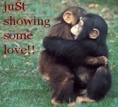 monky hug