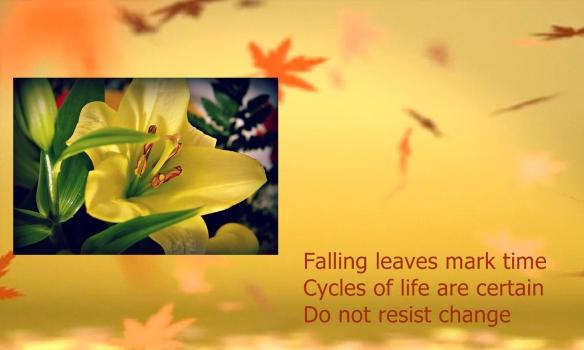 Falling-Leaves_3