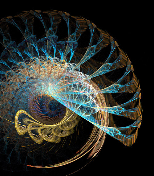 SpiralswithinSpirals