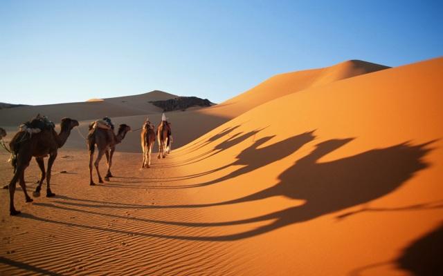 Sand Dunes Of The Sahara Africa_3