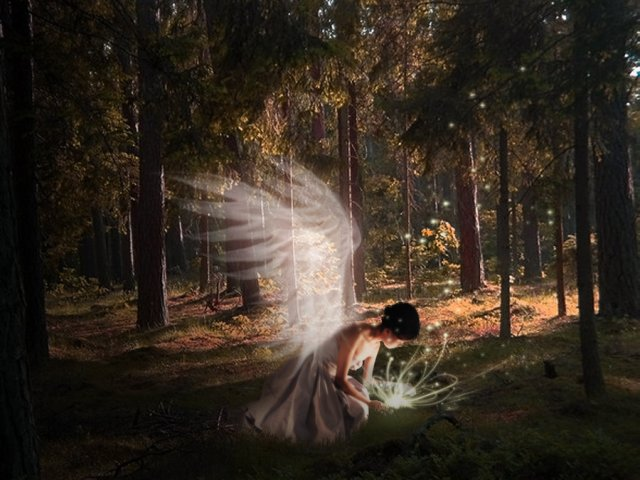 Angel_in_forest_by_finieramos