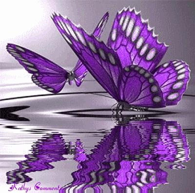 Purple-Butterflies-butterflies-35243887-400-395