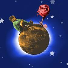 little prince and the rose