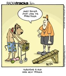 old-dog-tricks