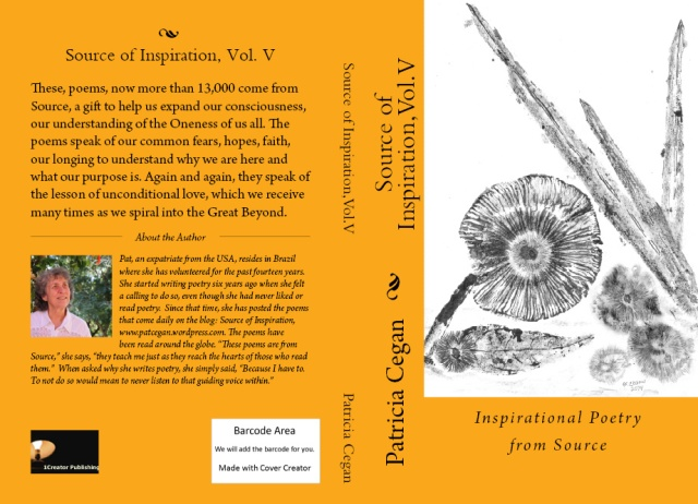bookcoverpreview-vol-5